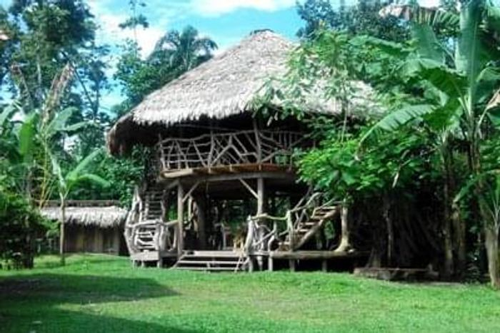 Amazing Treehouse AirBnB in Costa Rica
