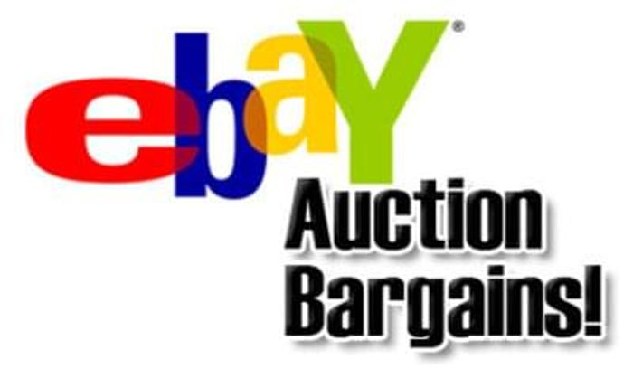 Ebay bargain hunter!
