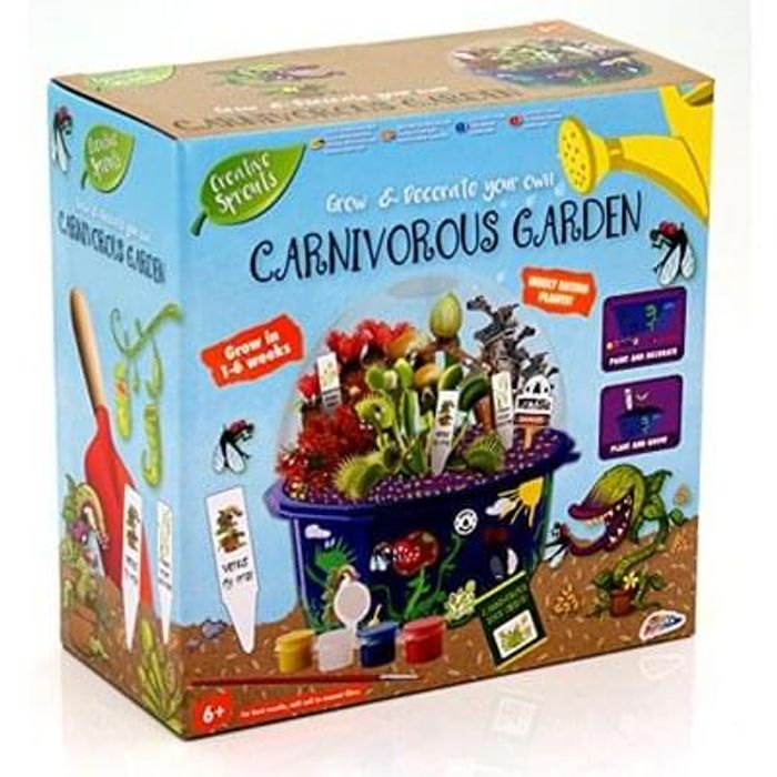 Creative Sprouts Grow & Paint Your Own Carnivorous Garden
