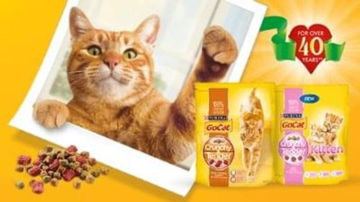 free purina samples for your cat