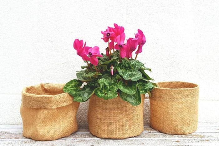 ROUND BURLAP POT Jute Hessian Planter Small Sack Garden Birthday Valentine's Day