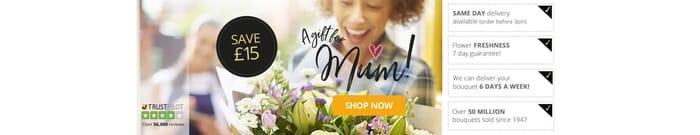 20% off Orders at eFlorist Flowers