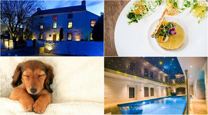 Win a Pet Friendly Overnight Stay at the Corran Resort & Spa