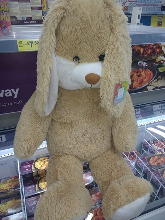 Giant Easter Bunny Teddy - Instore Iceland