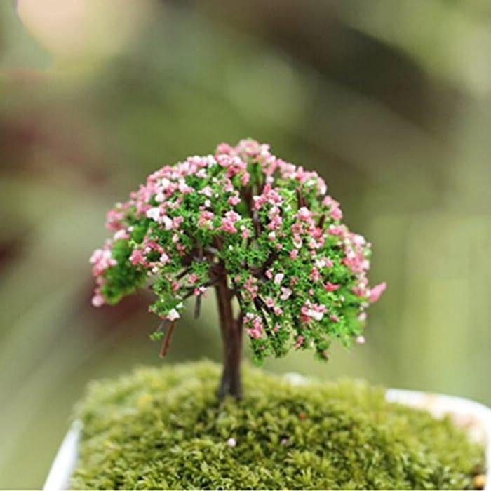 Miniature Tree Plant.