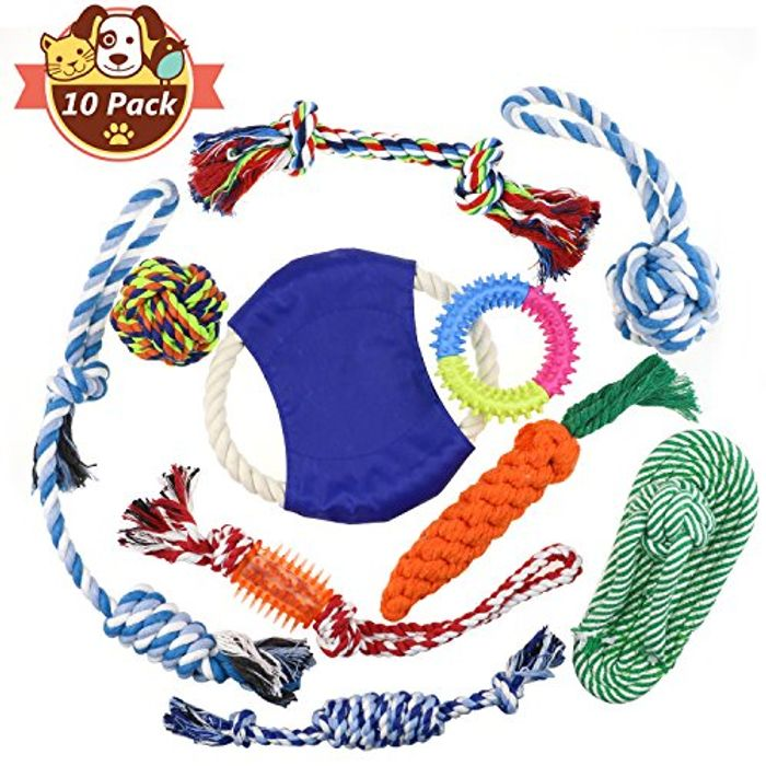 Big Pack of Chewy Dog Toys (50% Off)