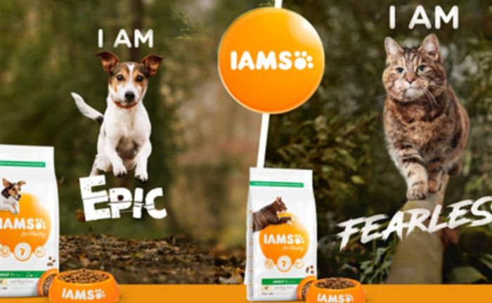 Free 2kg Bag of IAMS Vitality for Dogs or Cats