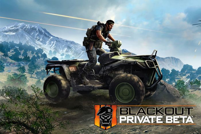 Blackops 4 Blackout Beta - Free Code - O2 Priorities
