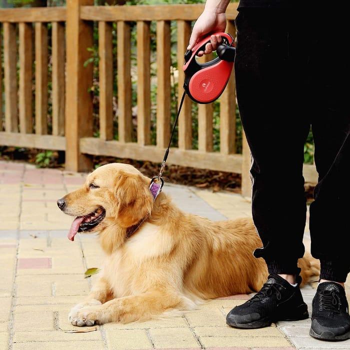 GoPetee Retractable Dog Lead 5M