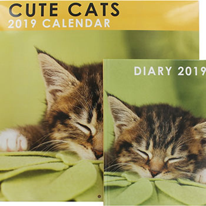 The Works Cute Cat and Pocket Diary 2019