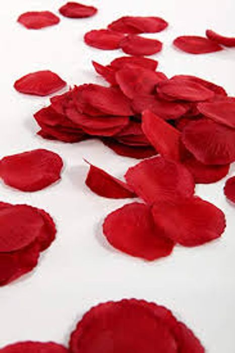300 Deep Red Silk Rose Petals