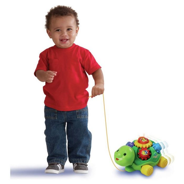 Cachet Pull and Play Turtle