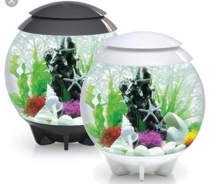 BiOrb Halo 30L Fish Tank White SAVE £40