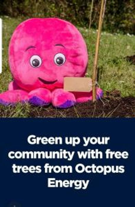 Free Tree for Schools and Community Groups