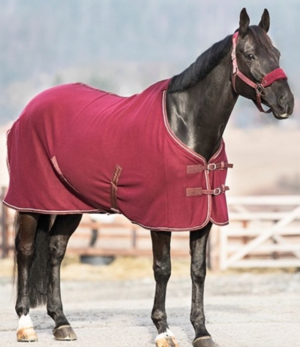 14% off Horse and Pet Products with Code at Naylors