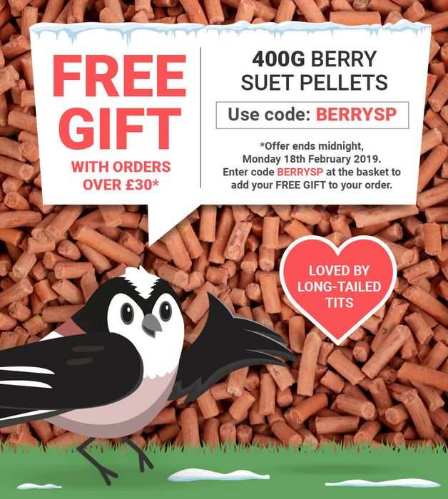 FREE GIFT of 400g Berry Suet Pellets with Orders over £30