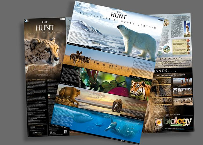Order Your Free 'The Hunt' Poster