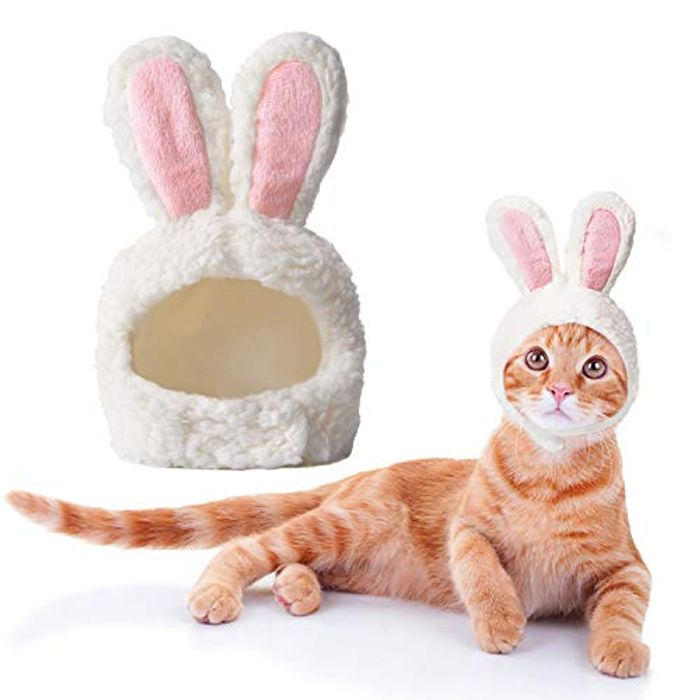 Cat Easter Costume, Cat Outfit Adjustable Size Bunny Ears - 58% Off with Code!