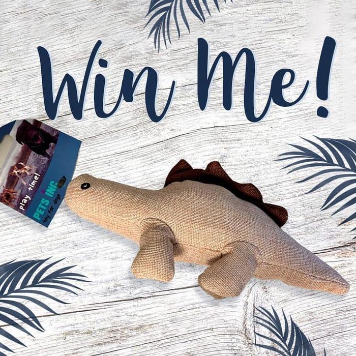 Win a Dinosaur Dog Toy!