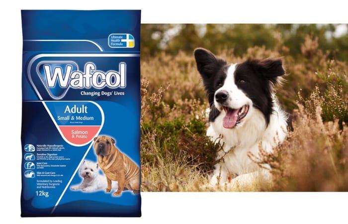 FREE Wafcol Dog Food Sample