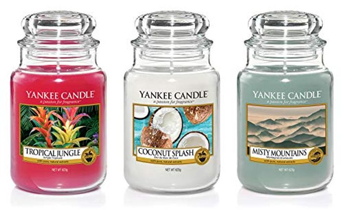 3 X Official Yankee Candle Signature Fresh & Fruit Large Jars - 47% Off