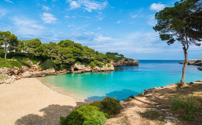 Majorca: All Inclusive Holiday to Cala d'Or with Kids Stay FREE