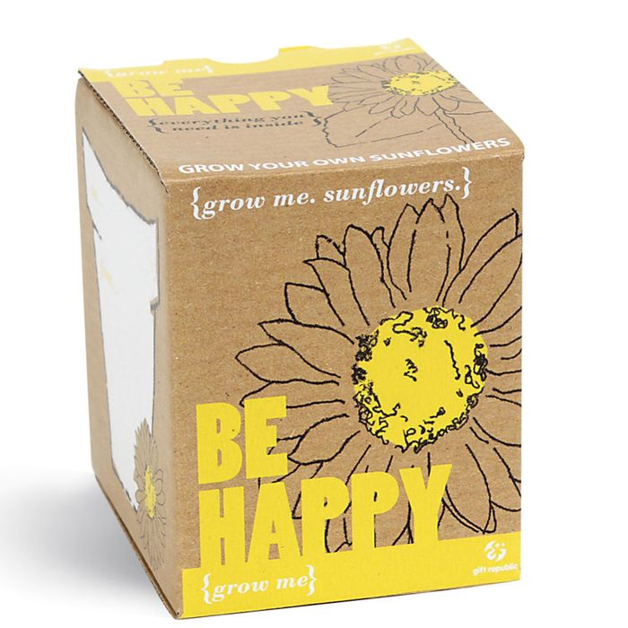 The Grow Me Sunflower Gift Box