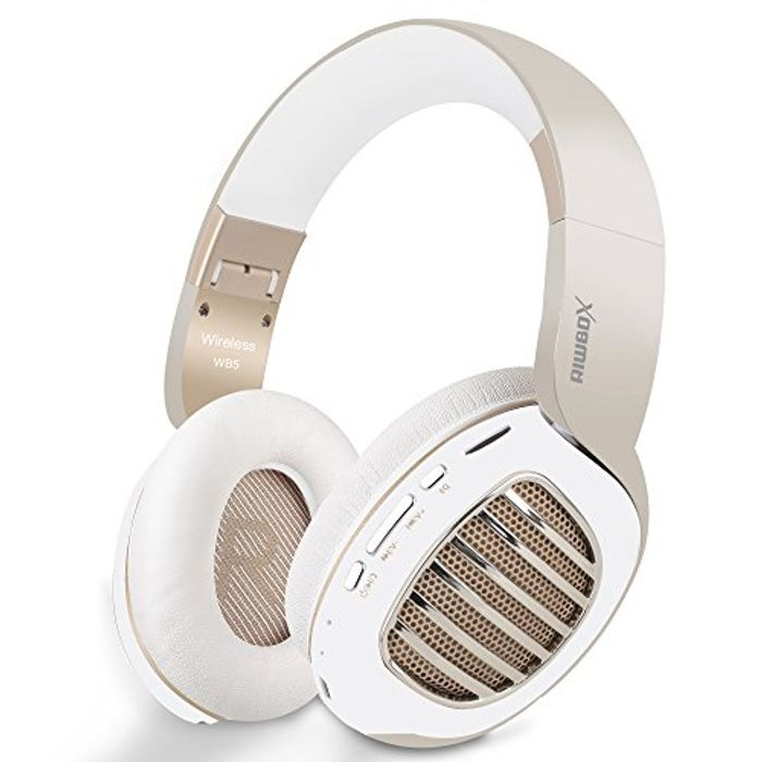 RiWB5 Bluetooth 4.2 Wireless Headphones over Ear with Microphone & Sd Card Slot
