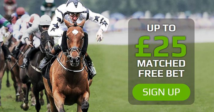 Free £25 Grand National Bet