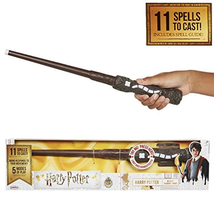 Harry Potter Wizard Training Wand