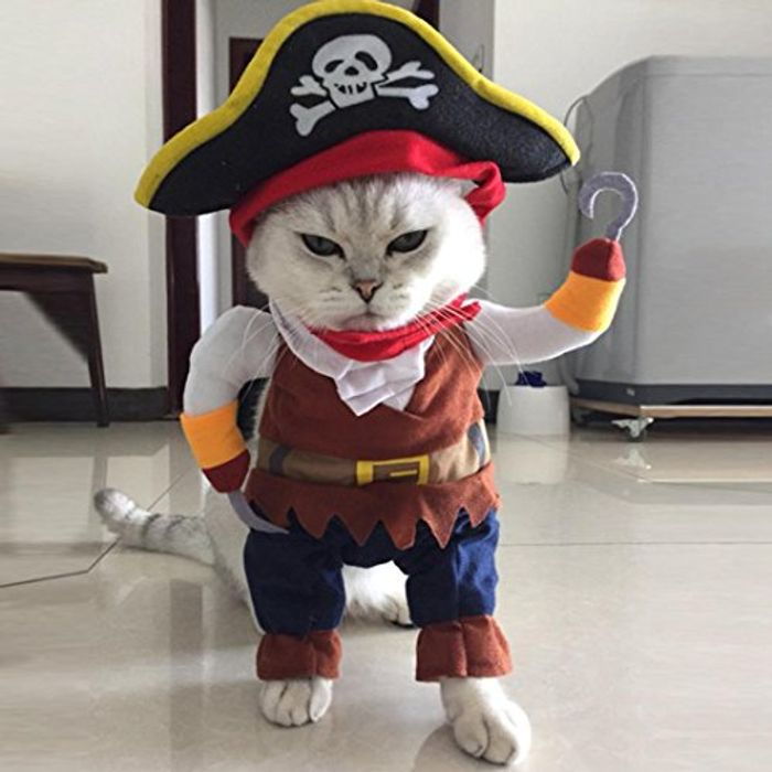 Funny Pet Clothes Pirate Dog or Cat Costume Size M + £1.59 Delivery