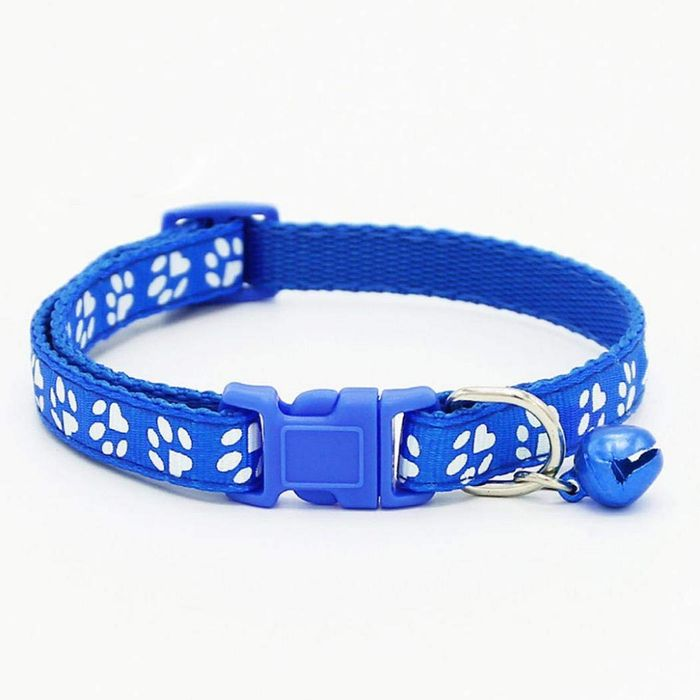 Pet Collar 80% off + Free Delivery