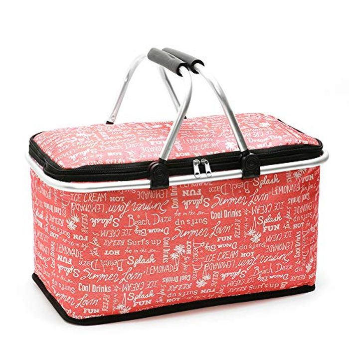 Insulated Cooler Bag 29L Foldable Cooler Lunch Tote
