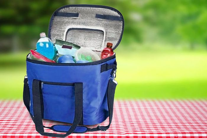 XL 35Ltr Insulated Cooler Bag