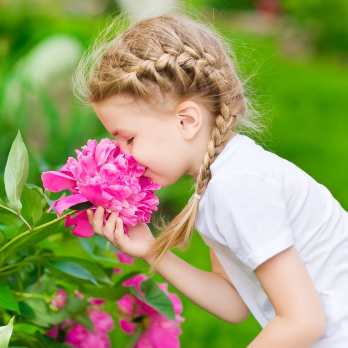 Free May Workshop for Children - the Sensory World of Plants