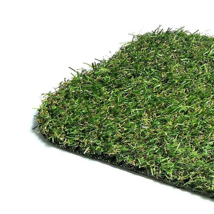 Free Grass Sample !!!