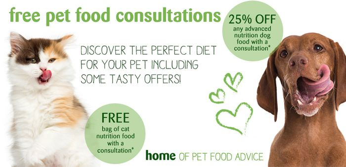 Free Bag of Cat Nutrition Food with a Free Consultation