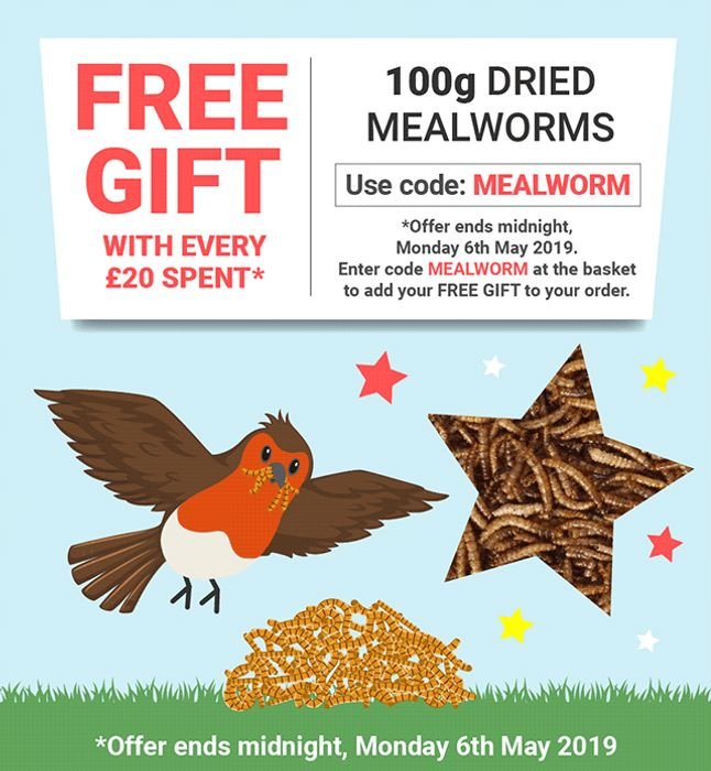 FREE 100g Dried Mealworms When You Spend £20