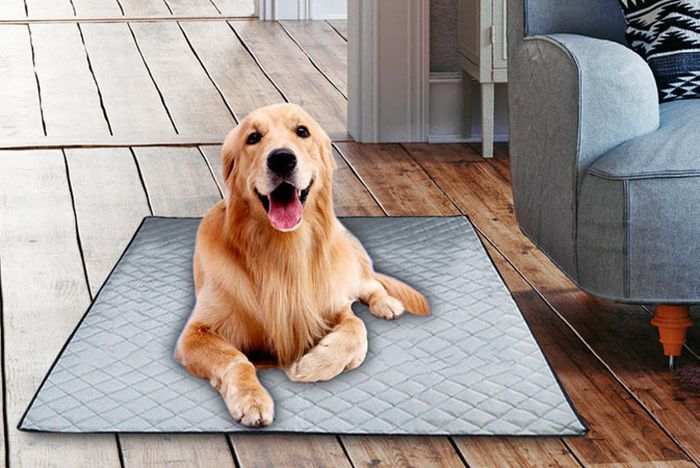 Padded Pet Cooling Mat - 3 Colours & 4 Sizes!