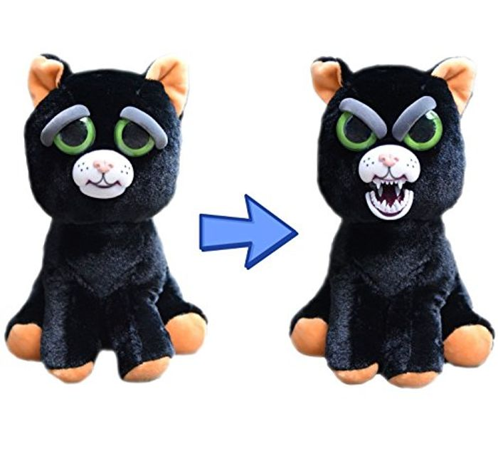 Cute or Creepy? Feisty Pet Katy Cobweb
