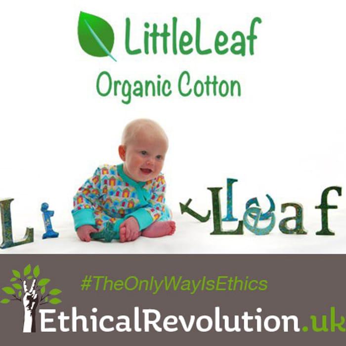 10% LittleLeaf Coupon Code