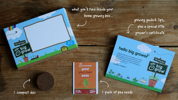 Free Home Growing Kit from Innocent Big Grow