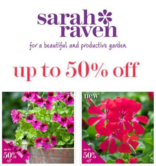 Sarah Raven Plant Sale - up to 50% OFF