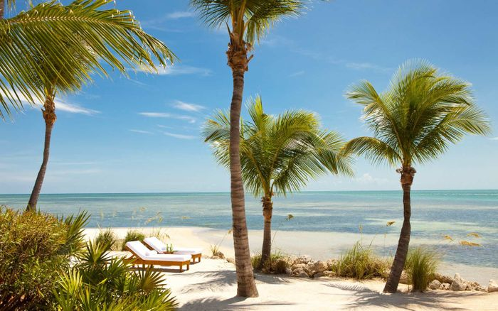 WIN a ROAD TRIP to FLORIDA, worth £5,000