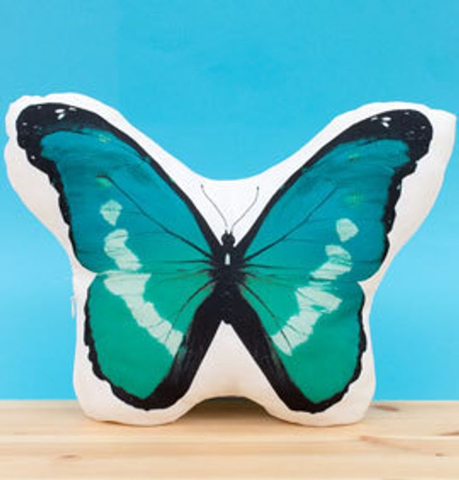 Teal Butterfly Light up Cushion