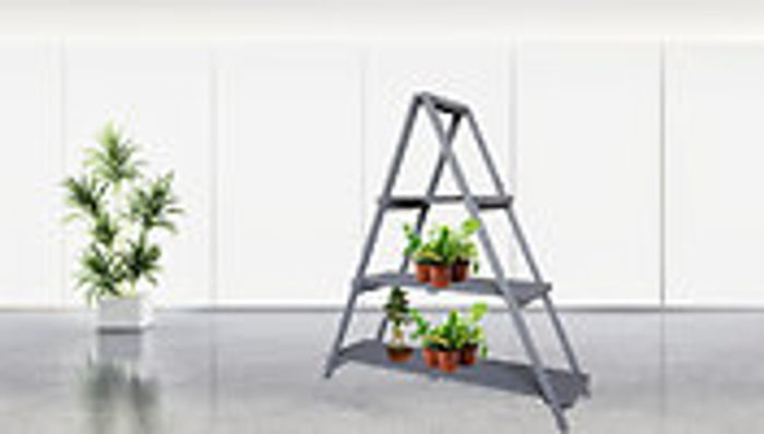 Aster Wooden A-Frame Plant Ladder Stand