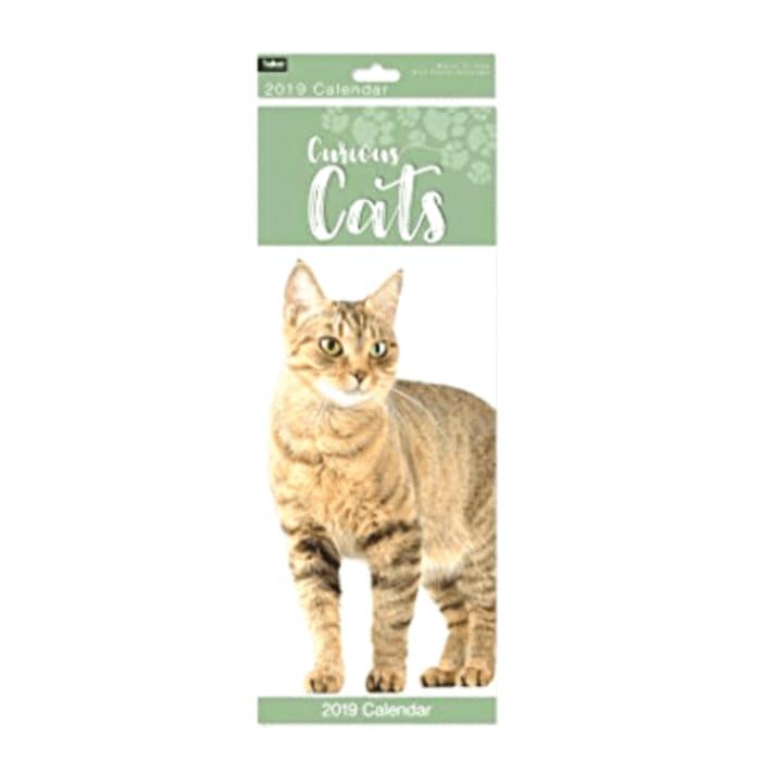 2019 CURIOUS CATS CALENDAR Only £0.01
