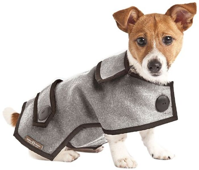 Price Drop! Hailey & Oscar Wool Designer Dog Coat, 15-Inch, Grey (Add-On)