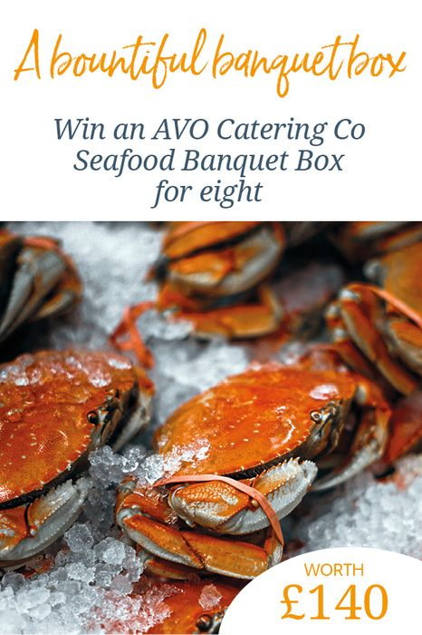 Win an AVO Catering Co Seafood Banquet Box for Eight, worth £140!