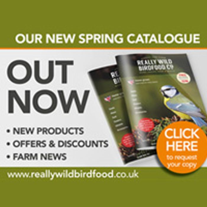 Request a Copy of Our Free Catalogue | LatestDeals co uk